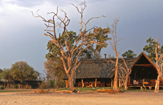Bomani Safari Camp in Hwange