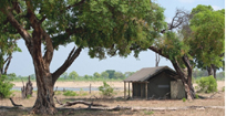 Davison Camp in Hwange