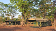 Luxury Mobile Safari Camp in Hwange