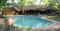 Miombo Safari Camp in Hwange