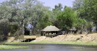 Mana Pools Ruckomechi Wilderness Safaris