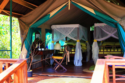 Gombe Forest Lodge Tanzania