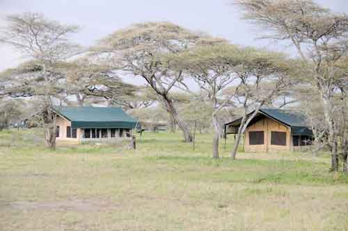 Tingitana Migration Camp