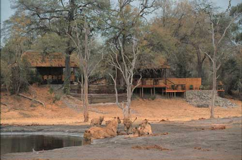 Savute Camp - Wilderness Safaris